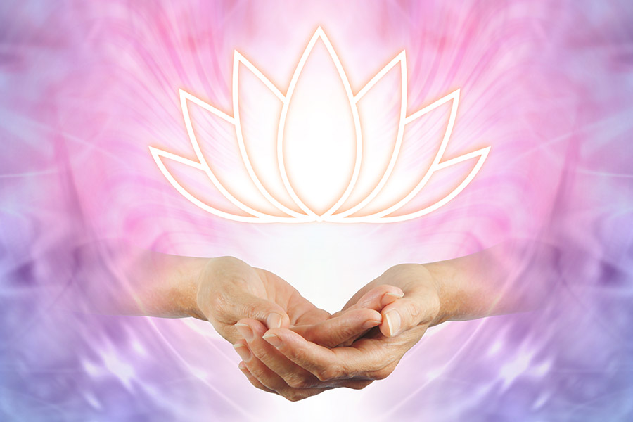 Hands holding Lotus